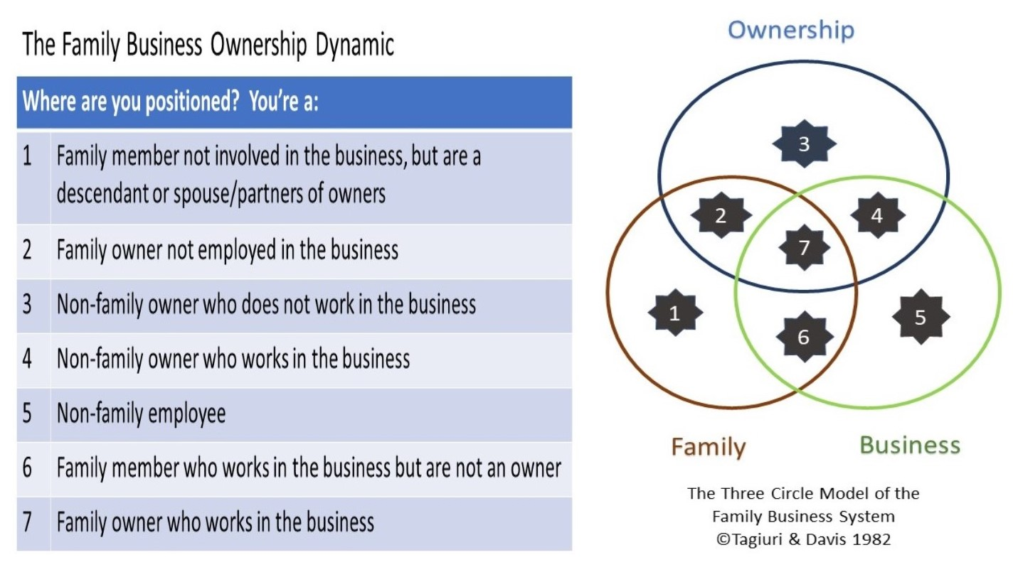 Family Business Positioning Tool